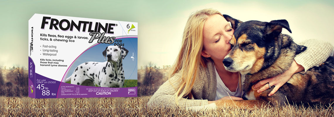 Same FDA/EPA approved pet medications as the vet, for up to 25% less. Fast & Free Shipping on orders over $ % Satisfaction Guaranteed. 10 million customers.